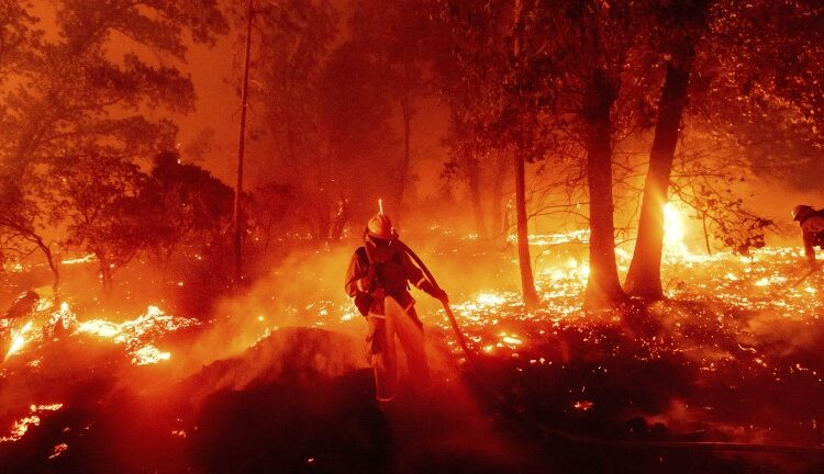 Presidential Candidates Response to Westcoast Wildfires